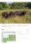 Juli Mauerradweg Der Berliner Mauerradweg führt am Rande des Falkenhagener Feldes entlang. Neben Spuren der Teilung entlang der Grenze bietet die Natur ganz überraschende Anblicke. Wer rechnet schon damit, in den Spektewiesen eine Herde asiatischer Wasserbüffel zu sehen? (Foto: Ralf Salecker)